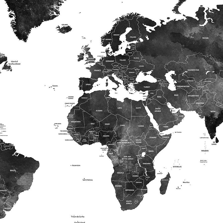World map black and white poster detailed close up
