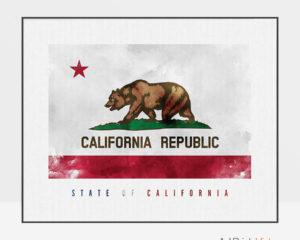 California State flag art print
