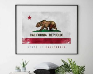 California State flag art print second