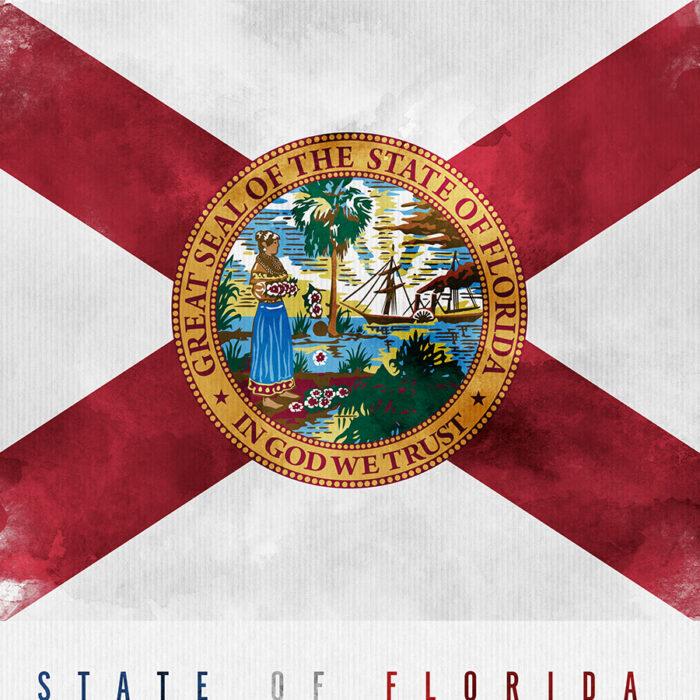 Florida State flag art print detail