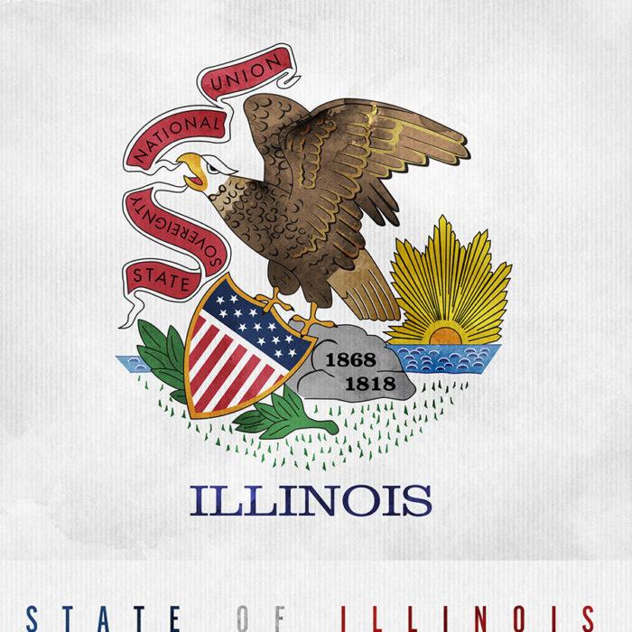 Illinois State flag art print detail