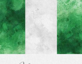 Nigeria flag art print detail