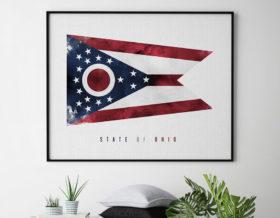 Ohio State flag art print second