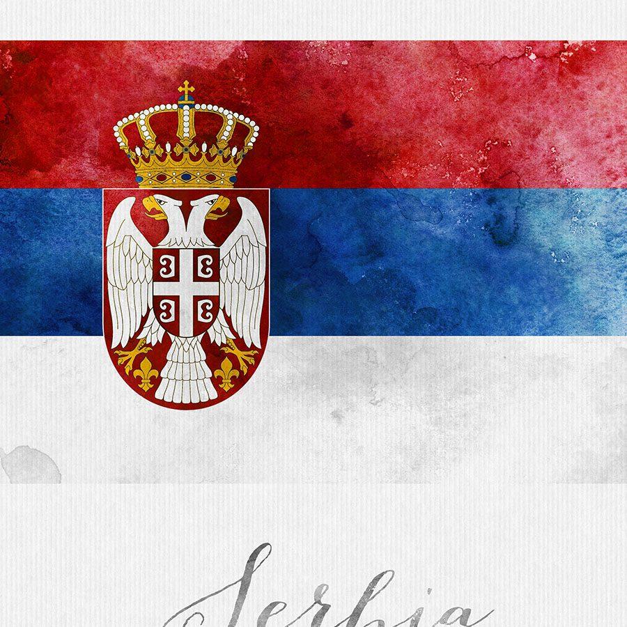 Serbia flag art print detail