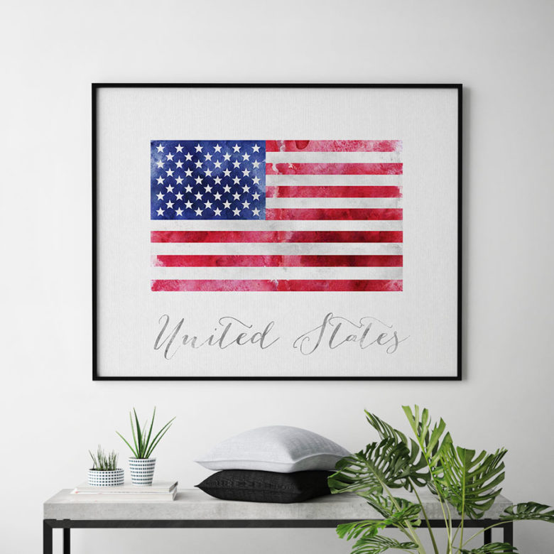 United States flag art print second
