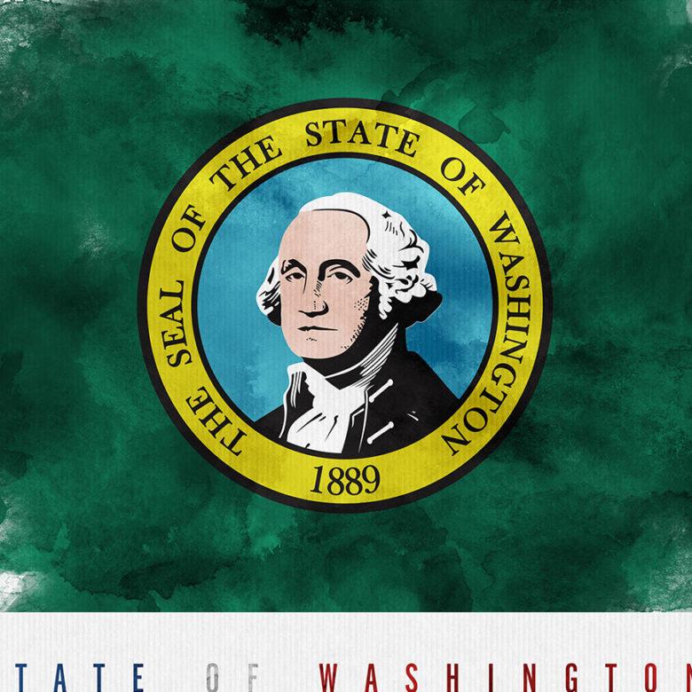 Washington State flag art print detail