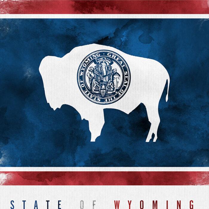 Wyoming State flag art print detail
